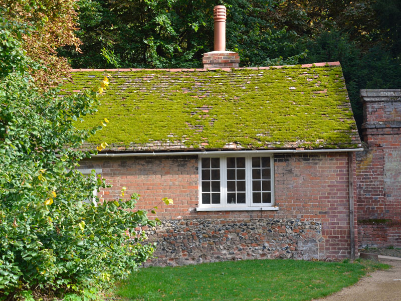 Content Image English Brick Cottage With Moss | Hi-Rise